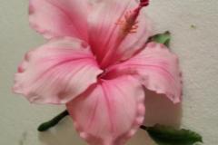 Hibiscus-in-sugar